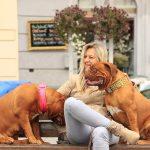 Pourquoi dit-on que le chien est le meilleur ami de l'homme ?  (B2)