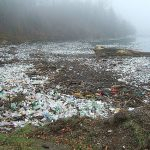 Cette rivière croule sous les déchets (B1)